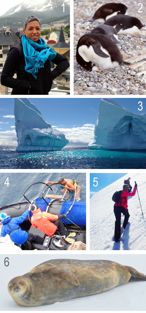 blog.img.mom-wise.antarctica6