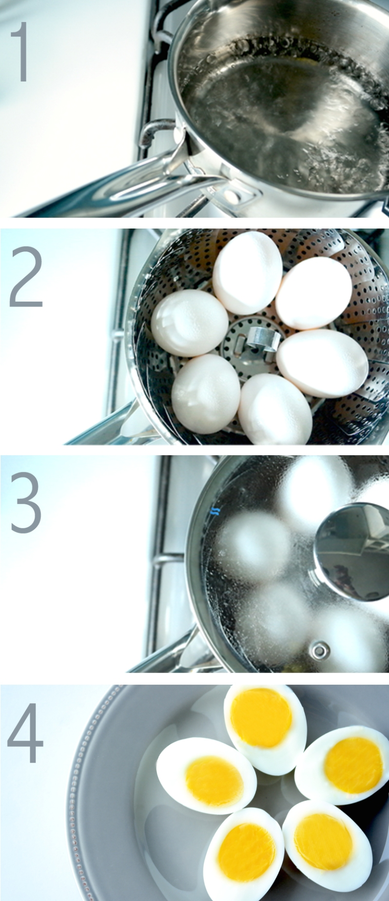 img.son-college.eggs1